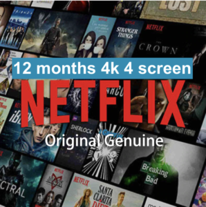 Netflix-12-months-4k-4screen